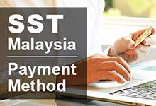 马来西亚销售和服务税 (SST) 的支付方式